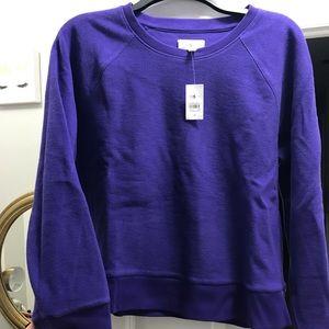 Lou Grey Never Worn Purple Sweatshirt.  Sz M